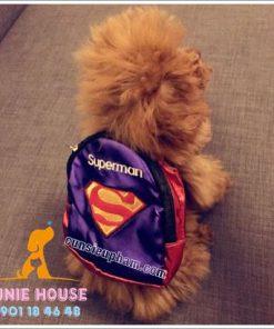 Balo cho chó mèo - quần áo khủng long cho chó mèo - quần áo tết cho chó mèo - trang phục siêu nhân Junie House - Trang phục hiệp sĩ cao bồi cho chó - Đồ Minions - Đồ cướp biển cho chó