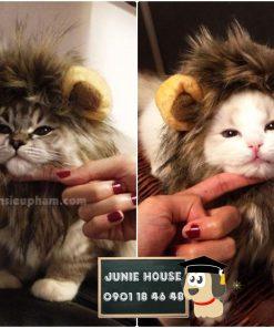 Junie House chuyên cung cấp trang phục cosplay cho chó mèo như áo Adidog có mũ, hiệp sĩ cao bồi, trang phục Superman, Cướp biển... Hotline 0901 18 46 48