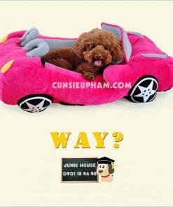 Junie House chuyên cung cấp trang phục cosplay cho chó mèo như áo Adidog có mũ, hiệp sĩ cao bồi, trang phục Superman, Cướp biển, đệm xe hơi cho chó mèo... Hotline 0901 18 46 48