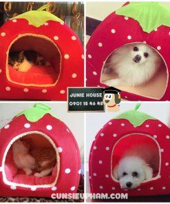 Junie House chuyên cung cấp quần áo cho chó, quần áo chó mèo, phụ kiện cho chó mèo, đồ chơi cho chó mèo, chuồng nệm trái dâu cho chó mèo | 0901.18.46.48