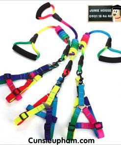 Junie House chuyên cung cấp quần áo, phụ kiện cho thú cưng: Trang phục superman, cướp biển, minions, vòng cổ yếm 7 màu cho chó | 0901.18.46.48