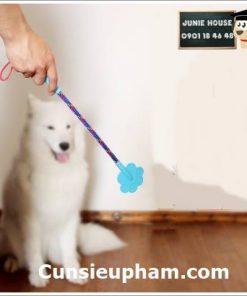Junie House chuyên cung cấp quần áo cho chó, quần áo chó mèo, đồ chơi cho chó mèo, cây roi tét đít cho chó mèo... Hotline 0901 18 46 48