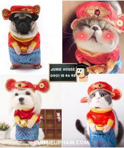 Junie House chuyên cung cấp các loại quần áo phụ kiện cho chó mèo như: đồ tết cho chó mèo, đồ Halloween cho chó mèo, đồ Noel cho chó mèo. quần áo thần tài cho chó mèo Hotline 0901184648