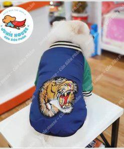 Junie House chuyên cung cấp quần áo, phụ kiện cho thú cưng: Trang phục superman, cướp biển, minions, áo khoác Gucci dành cho chó mèo | 0901.18.46.48