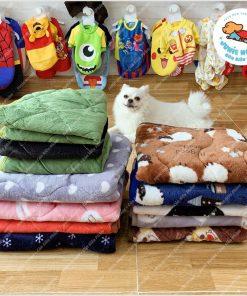 Junie House chuyên cung cấp quần áo, phụ kiện cho thú cưng: Trang phục superman, cướp biển, minions, khăn nệm mỏng dành cho chó mèo | 0901.18.46.48