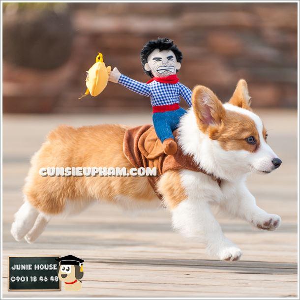 Giải đua chó toàn Việt Nam - Junie House Cún Siêu Phàm